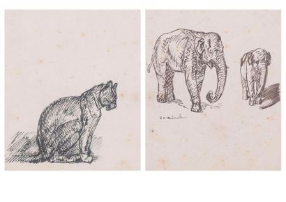 Steinlen,  Chat & Elepha, Reproduction d'une...