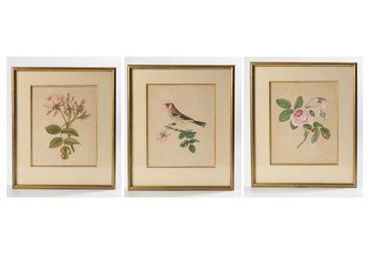 Trois aquarelles: