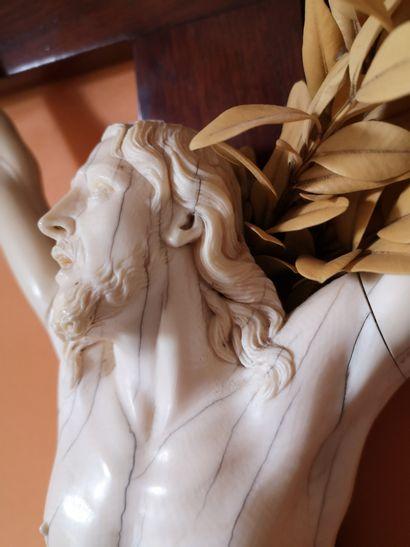 Important Christ en ivoire sculpté. Il est présenté la tête tourné vers la droite,...
