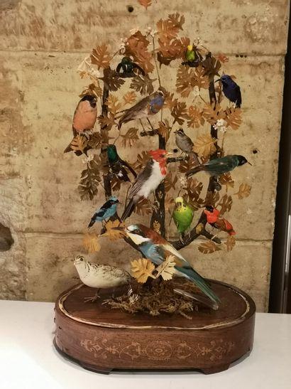 Globe aux oiseaux, sur un socle en marquetterie,...