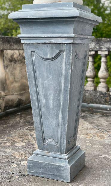 Gaine style Louis 14  Fût monolithe à décor...