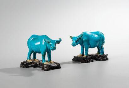 CHINE, XIXème siècle. Deux buffles en porcelaine émaillée bleue. Haut : 7 cm, long:...
