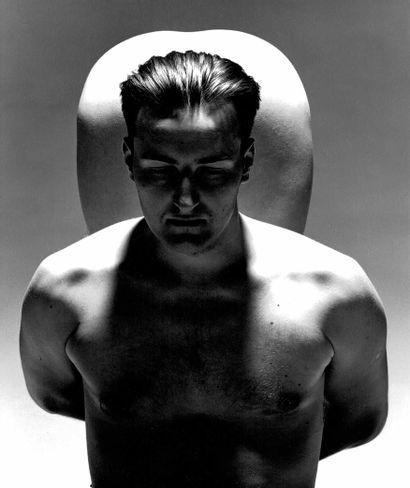 TONO STANO (1960-)