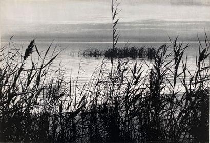 LUCIEN CLERGUE (1934-2014) Sans Prix de réserve -  Camargue, ca. 1960.  4 héliogravures...