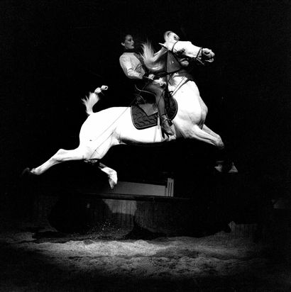 RAPHAËL SCHOTT (1971-)