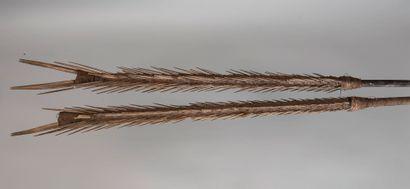 Lot de deux harpons - Kanak - Nouvelle Calédonie...