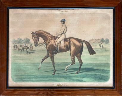 Albert ADAM (1830-1900)  CONTRAN par Fitz-Gladiator...