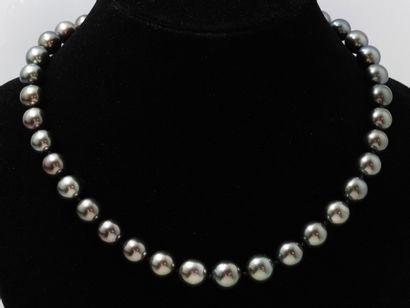 Beau collier composé d'une chute de 37 perles...