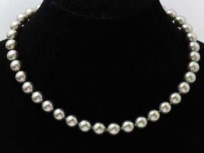 MAJORICA  Collier composé de perles grises...