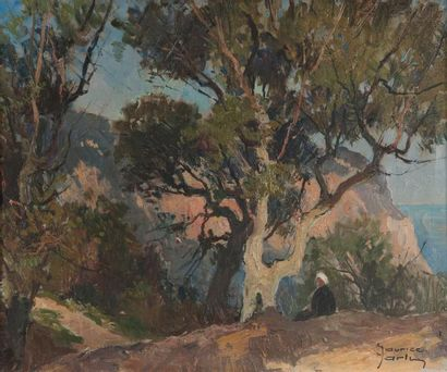 Maurice-Martin (1894-1978) Le cap Carbon Huile sur toile, signée en bas à droite,...