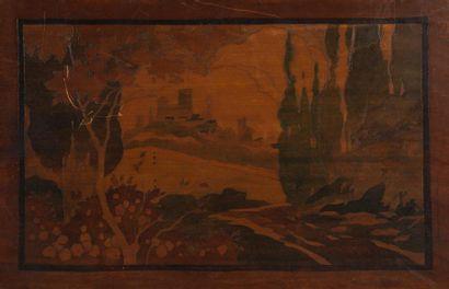 Paysage Marqueterie bois, non signée 36 x...