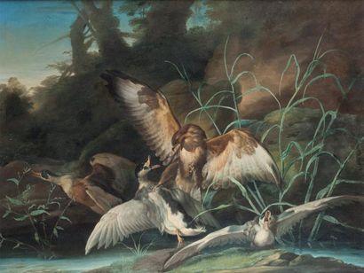Attribué à Jean Baptiste OUDRY (1686 - 1755) La chasse aux canards Toile. 61 x 80,5...