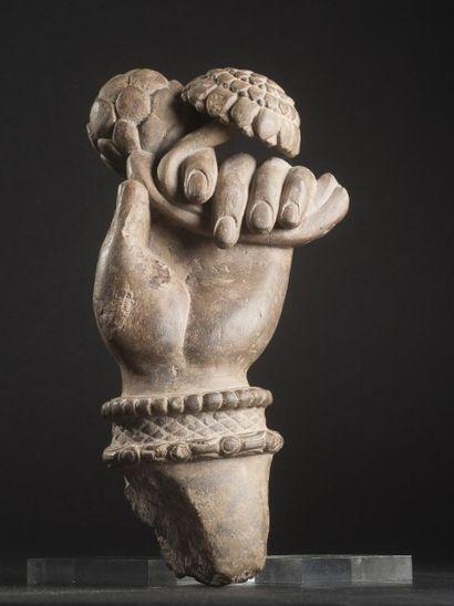 Main de bodhisattva, tenant un bouton de lotus et une fleur de lotus épanouie, symbolisant...