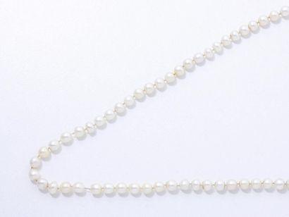 Collier composé d'un rang de perles de culture...
