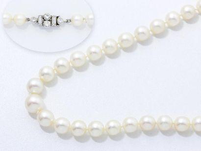 Collier ras de cou composé d'un rang de perles...