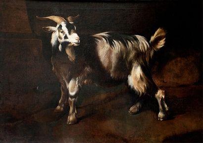 Johann Heinrich ROOS (Otterberg 1631-Francfort 1685)