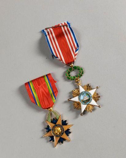 LOT DE 2 MEDAILLES : insigne de l'Ordre de...