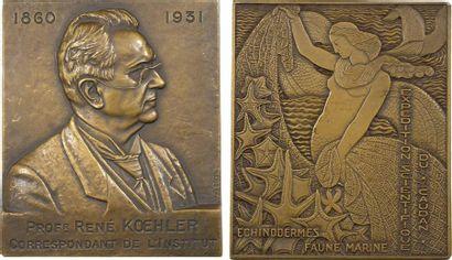 Bertola (L.) : le professeur Koehler et l'expédition scientifique du Caudan, 1931 Paris