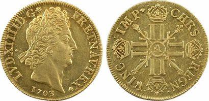 Louis XIV, double louis d'or aux huit L et aux insignes, 1703/2 Paris