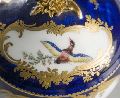 VINCENNES Pot à sucre Hébert couvert en porcelaine tendre à décor polychrome d'oiseaux...
