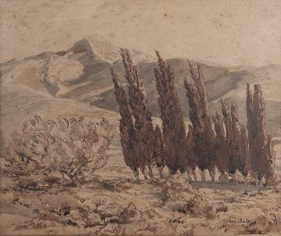 jean BALTUS, Les cyprès,aquarelle signée....