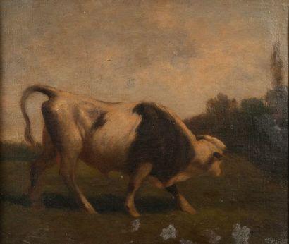 Ecole XIXème, Vache,Toile 30 x 35 cm
