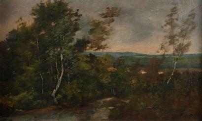 François DAUBIGNY ( 1817-1878), la vallée,...