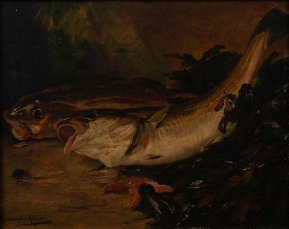 Dominique ROZIER, poissons,panneau signé....