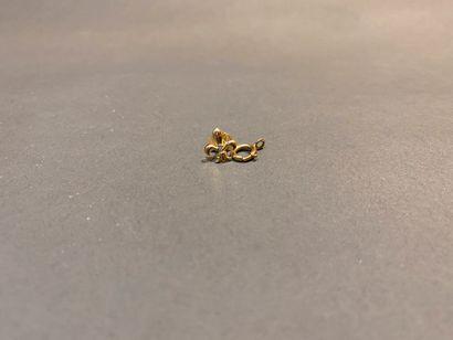Pin's fleur de lys en or 750 °/°° et son...