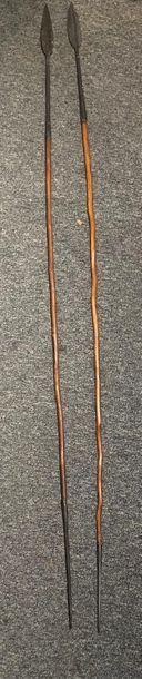 Lot de deux lances, Afrique Bois dur à patine brune brillante, fer forgé L. 141...
