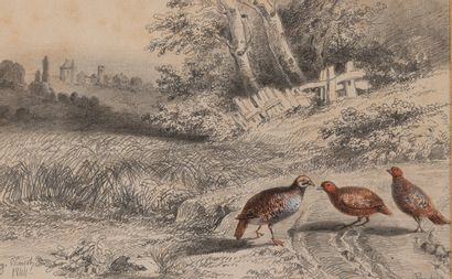 Eugène BLAISOT né en 1822  Perdrix et canards...