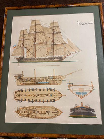 3 écorchés de bateaux, 3 pièces encadrées...