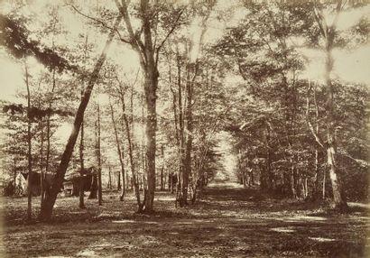 Photographe non identifié  France, c. 1865-1870....