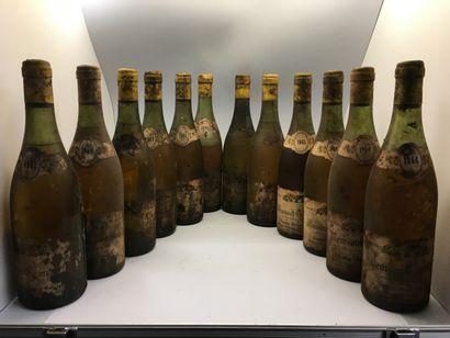 12 MEURSAULT from the Domaine Auguste Morey-Genelot...