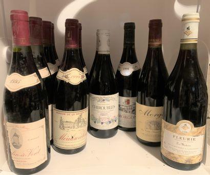 12 bouteilles dont 4 MOULIN-A VENT 1995 de...