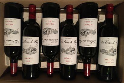 12 bouteilles de Château LA TOUR DE BY Médoc 2013