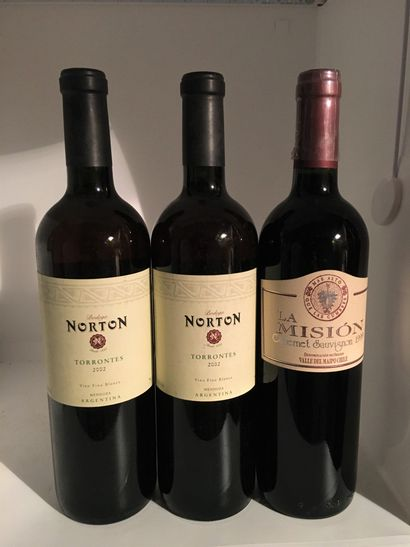3 bottles including 2 reds from Mendoza Rorton Torrontes 2002, ARGENTINA and 1 red...