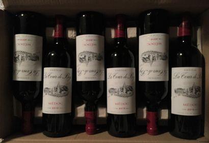 12 bouteilles de Château LA TOUR DE BY Médoc 2010