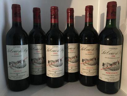 6 bottles of Château LA TOUR DE BY Médoc, 5 of 1993, 1 of 1988 base neck, labels...