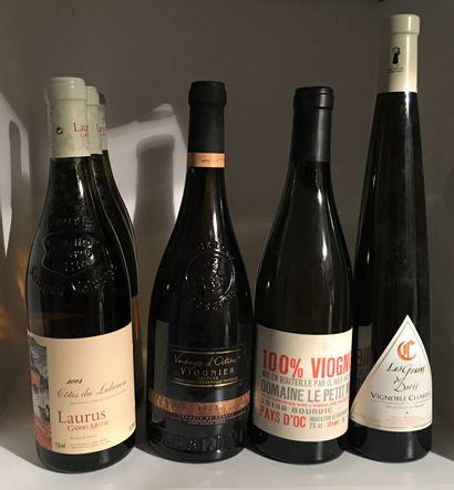 6 bouteilles dont 3 Laurus CÔTES DU LUBERON 2003 de Gabriel Meffre, 1 VIOGNIER Vendanges...
