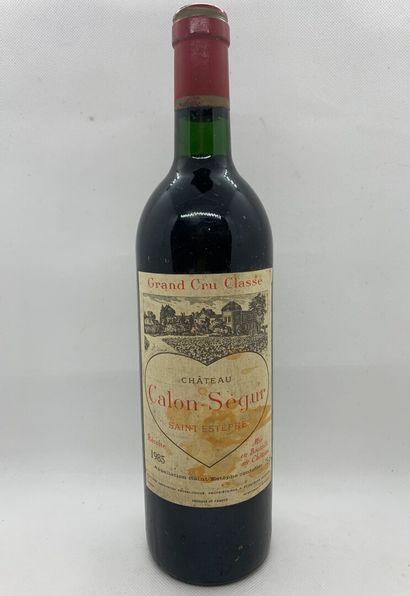 12 bouteilles dont 1 Château CALON-SEGUR...