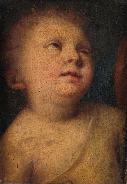 ÉCOLE ITALIENNE DU DÉBUT DU XVIIE SIÈCLE Tête d'ange Toile marouflée sur panneau....