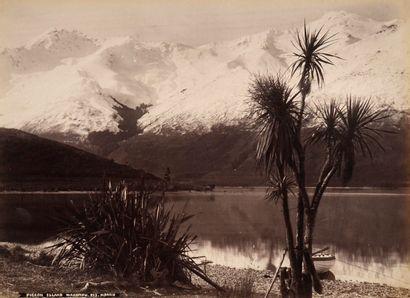 Morris  Nouvelle Zélande, c. 1880.  50 épreuves...