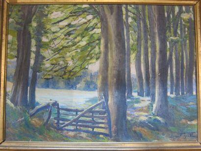 Clairière dans la forêt  Huile sur carton,...
