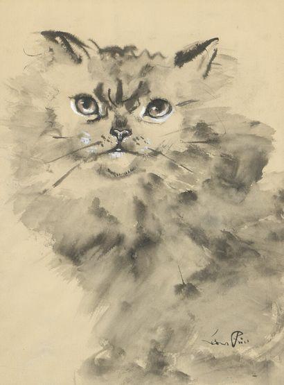 Leonor FINI (1907-1996)  Le Chat  Lavis d'encre...