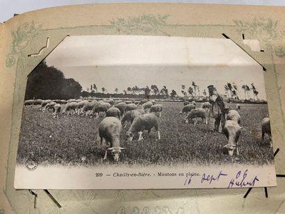 Un album de cartes postales de l'Oise, de...
