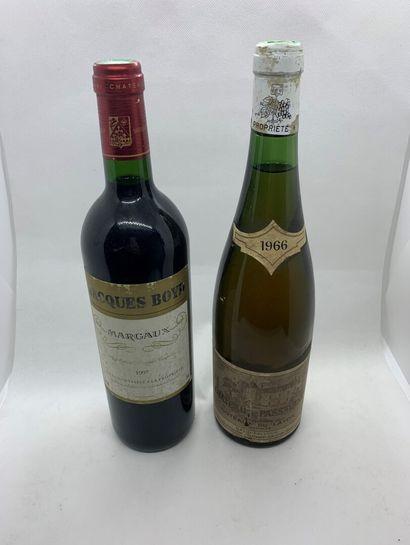 1 bouteille de COTEAUX DU LAYON 1966 du Château...
