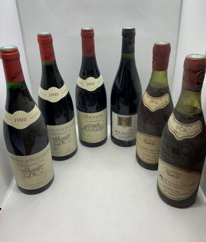 6 bouteilles dont 2 SAINT-NICOLAS DE BOURGUEIL...