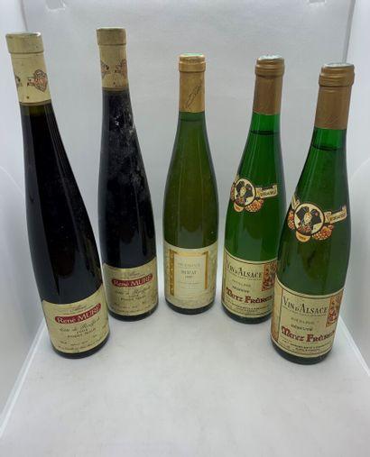 5 bouteilles dont 2 ALSACE Pinot Noir Côte...