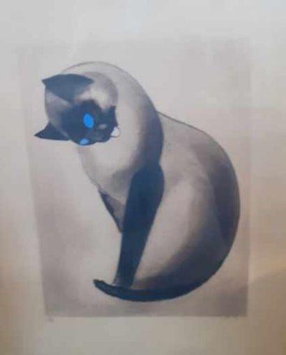 Lot de pièces encadrées :  Portrait de chat,...